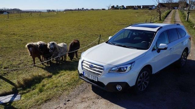 Koeajo: eurooppalaistunut Subaru Outback