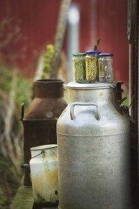 Maitotonkan päällä kolme Laukaassa valmistettavan biokaasupolttoaineen raaka-ainetta vasemmalta lukien nurmi, olki ja hake.