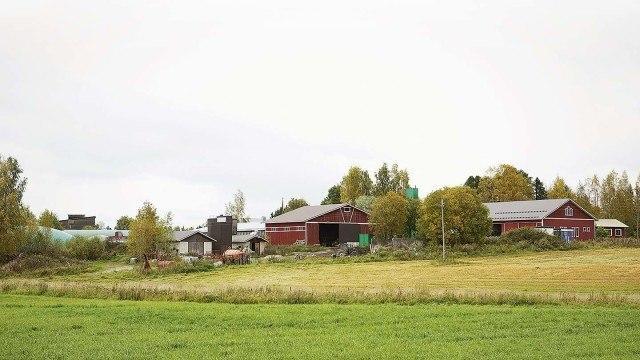 Kalmarin suvun tilan historia on jäljitetty vuoteen 1666.