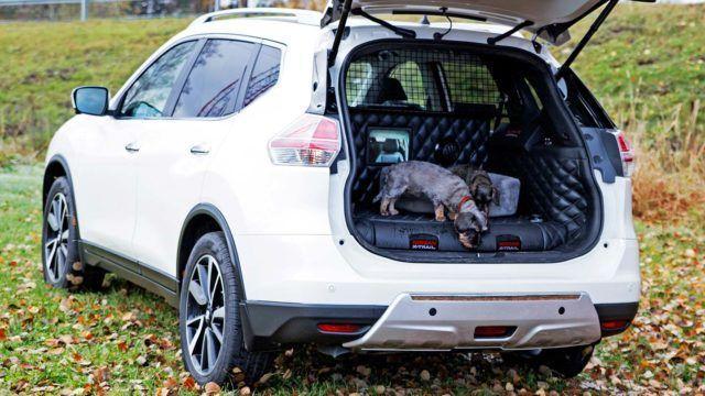 Hyväksi haukuttu: Nissan X-Trail 4Dogs on auto, jonka koira valitsisi