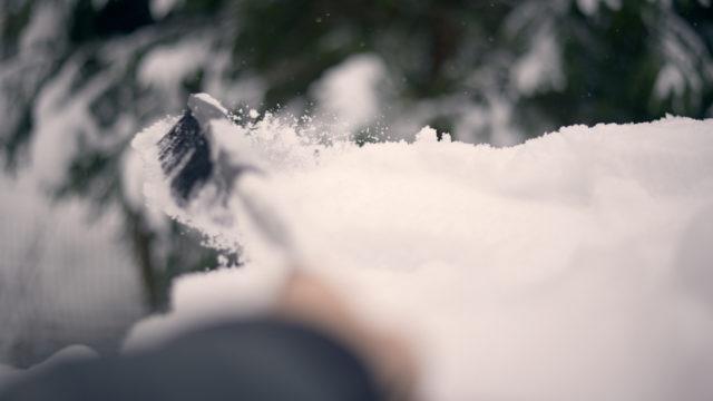 Lumiharjalla lumien poisto