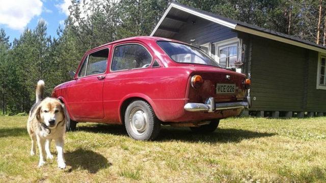 Seat 850 Koira - Tori.fi